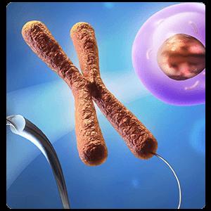 التطبيقات الجينية (الوراثية) في العُقْمِ حَمْل